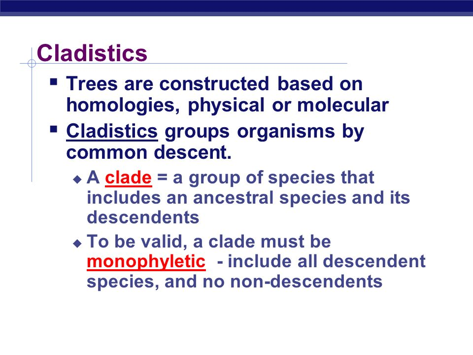 Cladistics Trees are constructed based on homologies, physical or molecular. Cladistics groups organisms by common descent.
