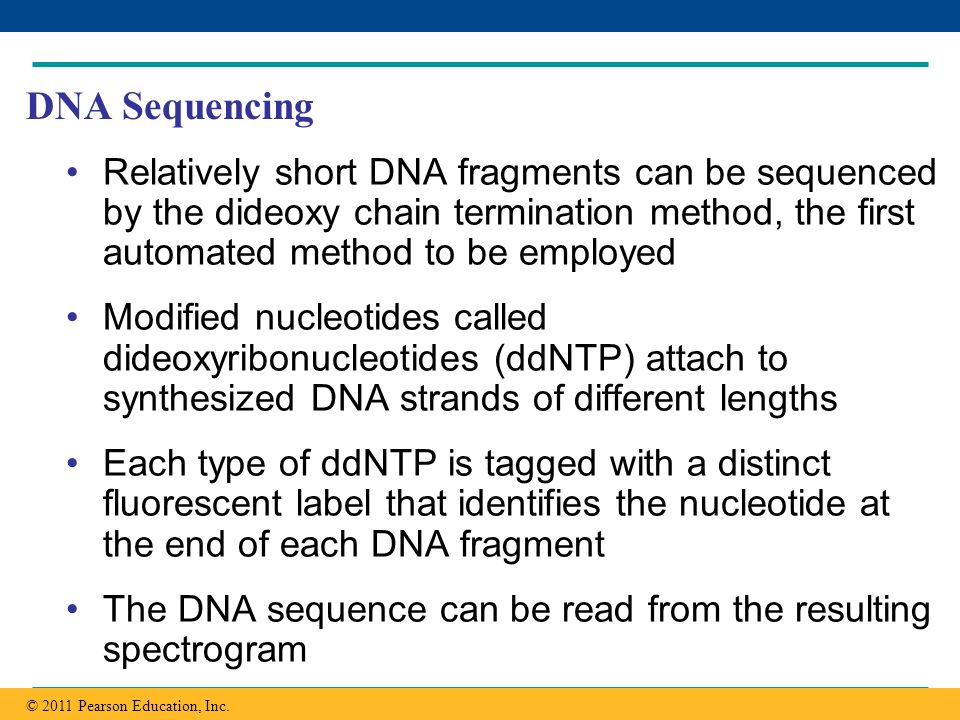 DNA Sequencing Relatively short DNA fragments can be sequenced by the dideoxy chain termination method, the first automated method to be employed.