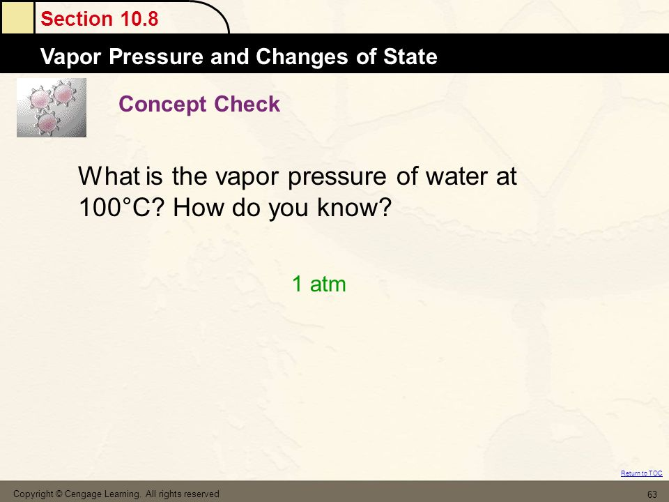 What is the vapor pressure of water at 100°C How do you know