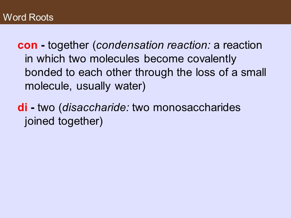 di - two (disaccharide: two monosaccharides joined together)