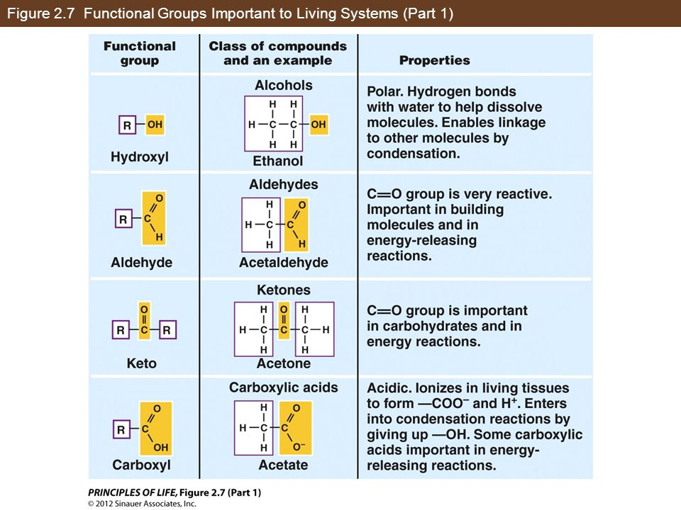 Figure 2.7 Functional Groups Important to Living Systems (Part 1)