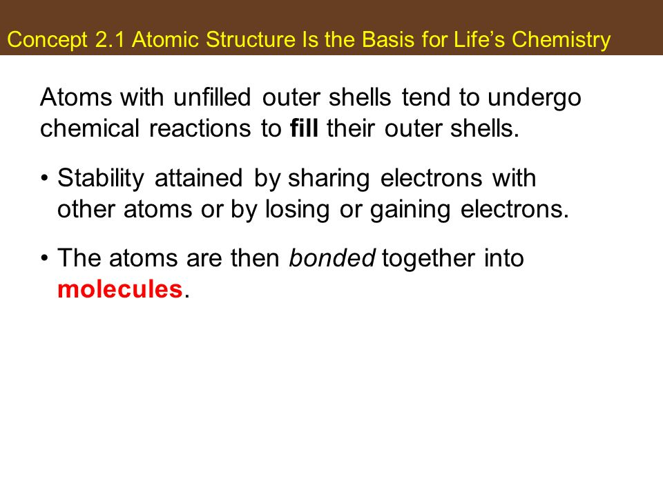 Concept 2.1 Atomic Structure Is the Basis for Life's Chemistry