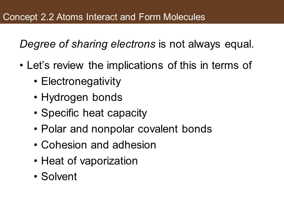 Concept 2.2 Atoms Interact and Form Molecules