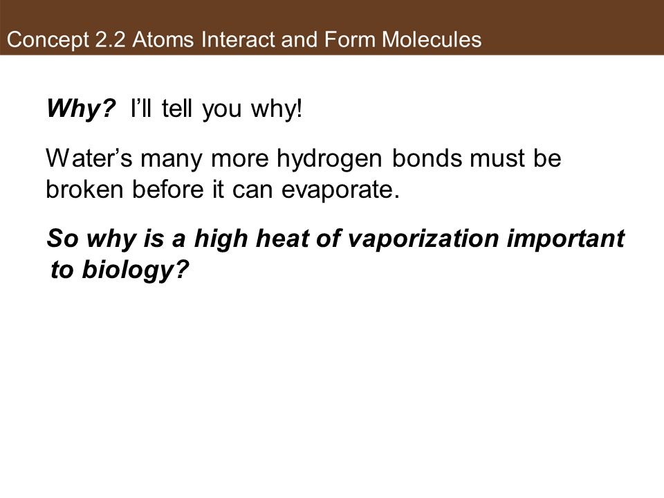 So why is a high heat of vaporization important to biology