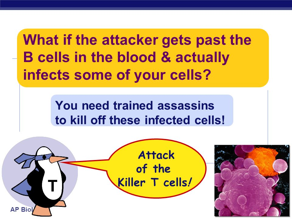 You need trained assassins to kill off these infected cells!