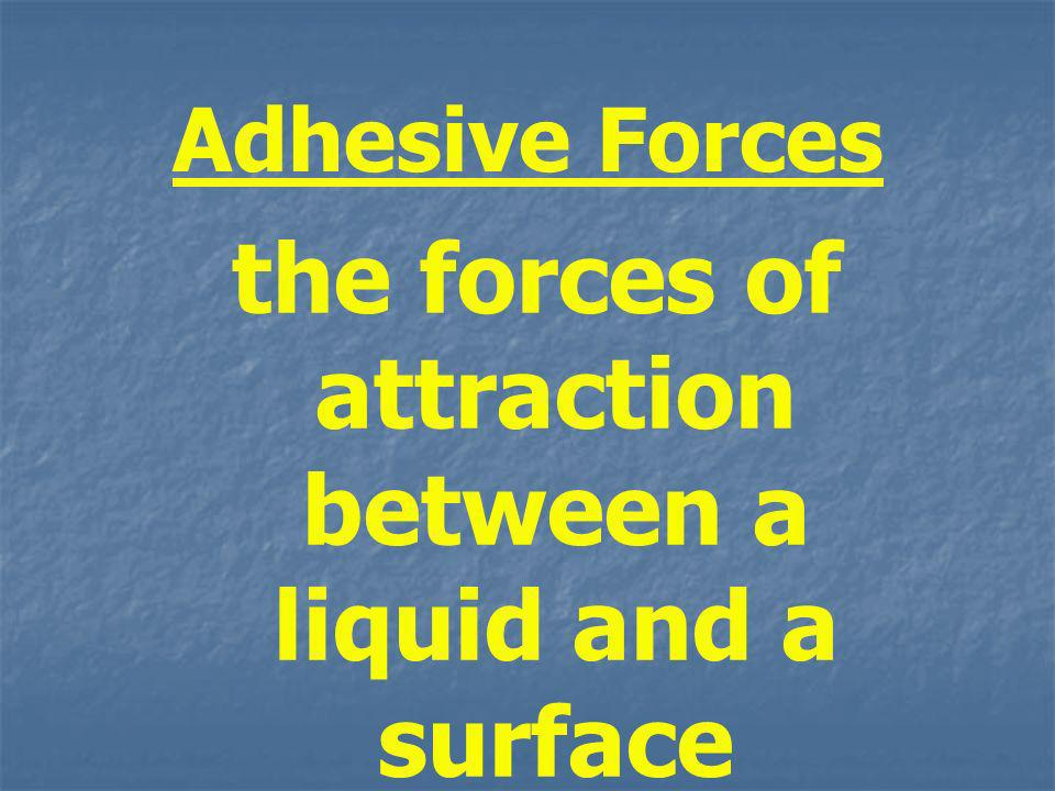 the forces of attraction between a liquid and a surface