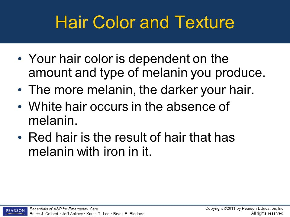 Hair Color and Texture Your hair color is dependent on the amount and type of melanin you produce. The more melanin, the darker your hair.