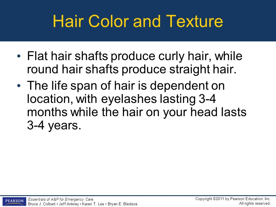 Hair Color and Texture Flat hair shafts produce curly hair, while round hair shafts produce straight hair.