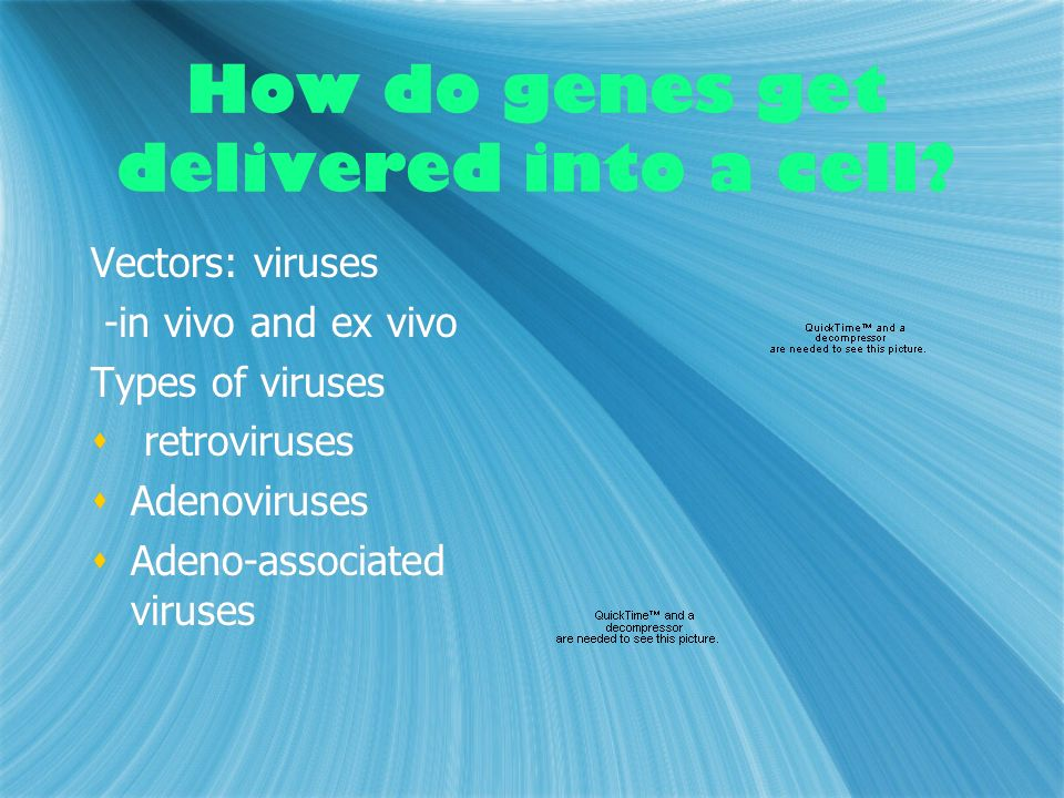 How do genes get delivered into a cell