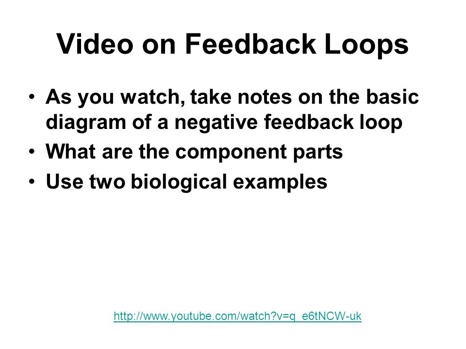 Video on Feedback Loops