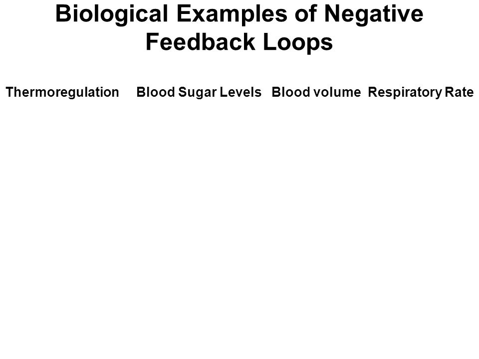 Biological Examples of Negative Feedback Loops