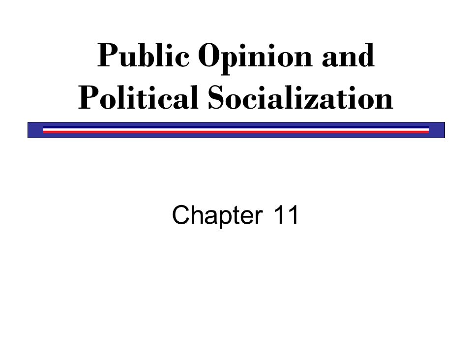 Public Opinion and Political Socialization
