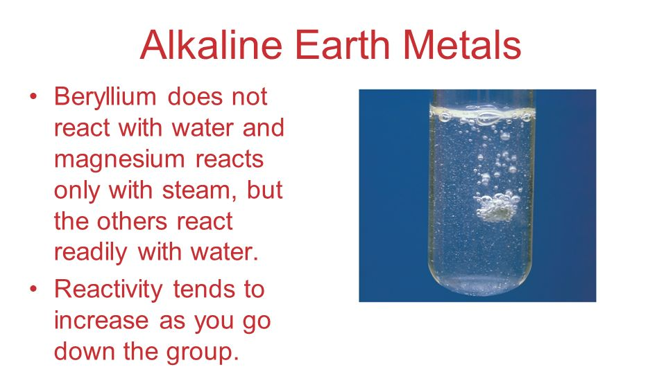 Alkaline Earth Metals Beryllium does not react with water and magnesium reacts only with steam, but the others react readily with water.
