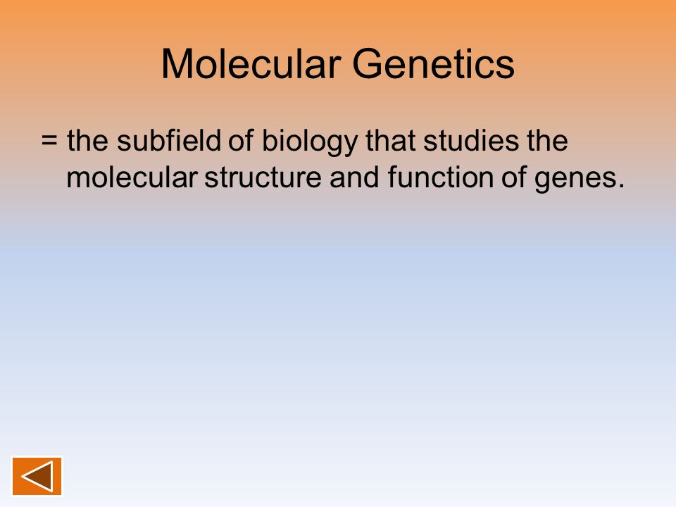 Molecular Genetics = the subfield of biology that studies the molecular structure and function of genes.