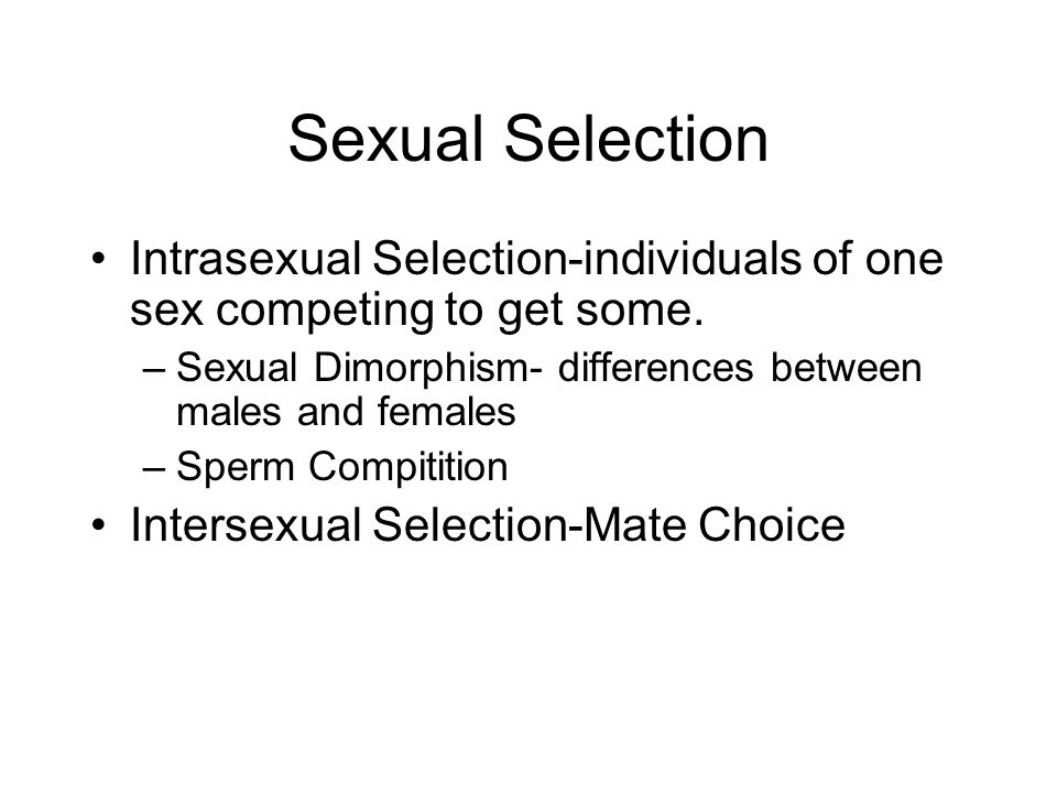 Sexual Selection Intrasexual Selection-individuals of one sex competing to get some. Sexual Dimorphism- differences between males and females.