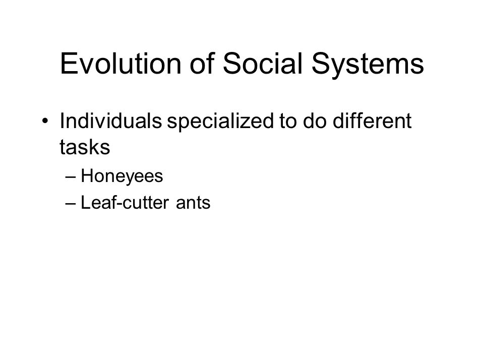 Evolution of Social Systems