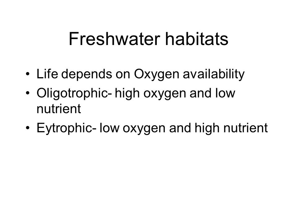 Freshwater habitats Life depends on Oxygen availability