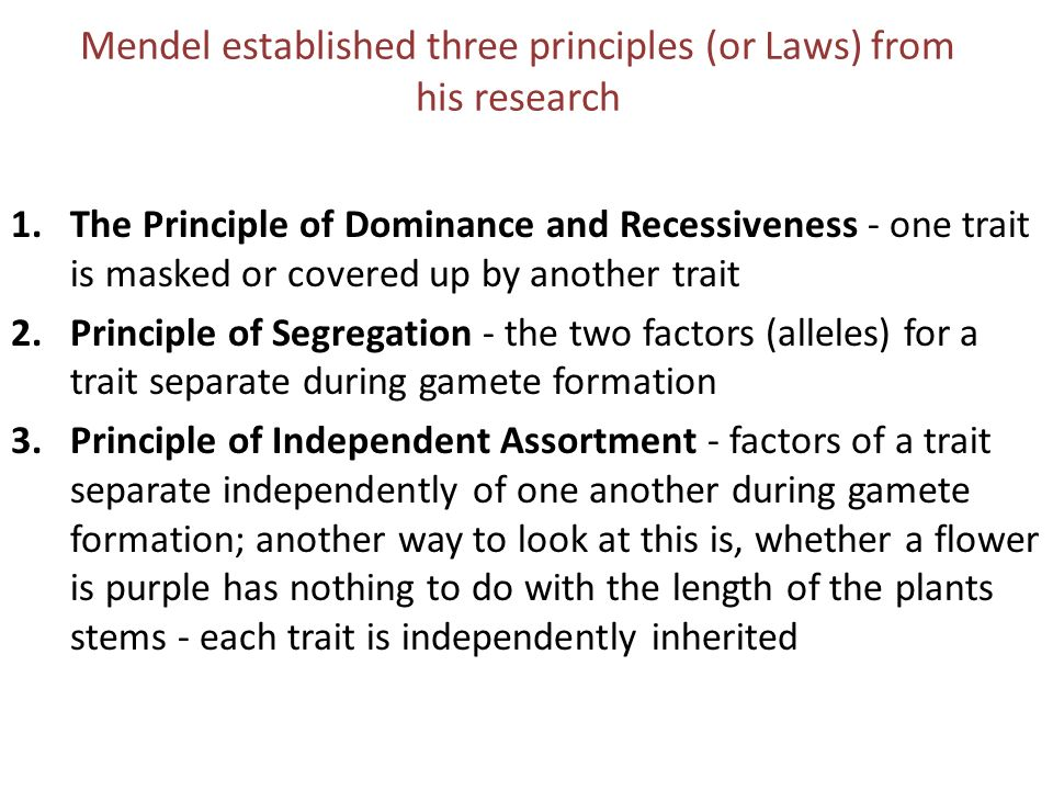 Mendel established three principles (or Laws) from his research
