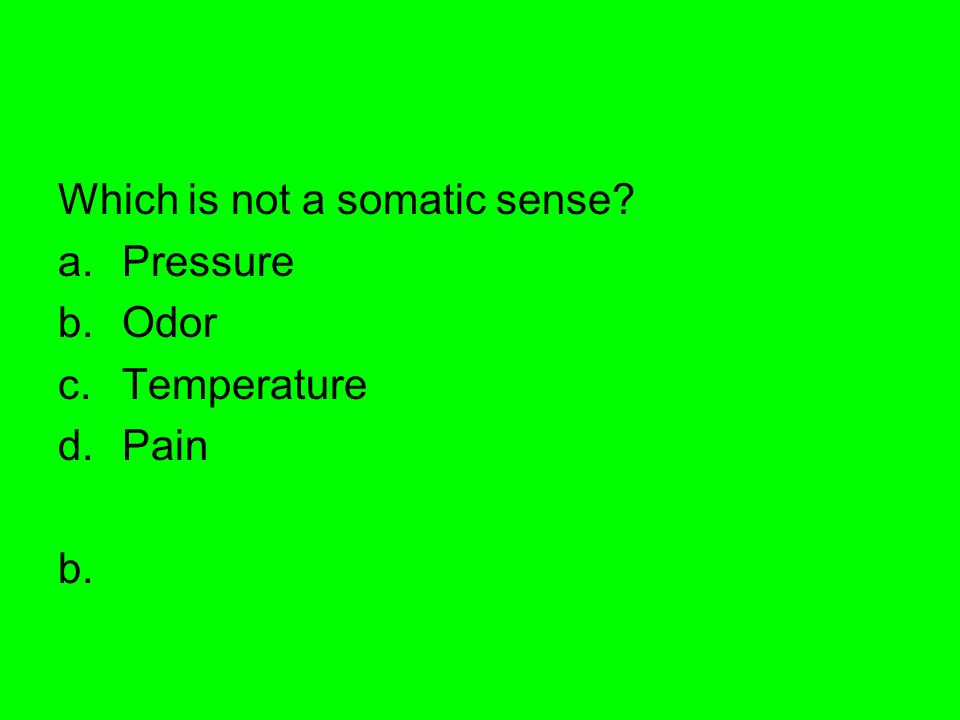 Which is not a somatic sense
