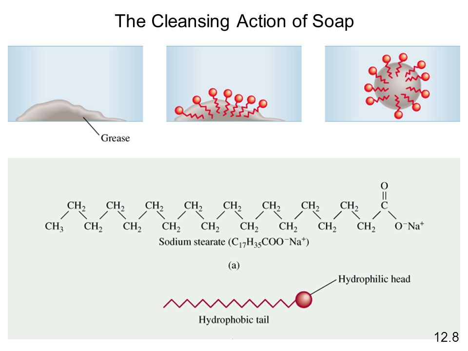 The Cleansing Action of Soap