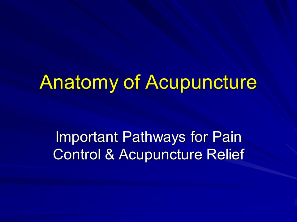 Anatomy of Acupuncture