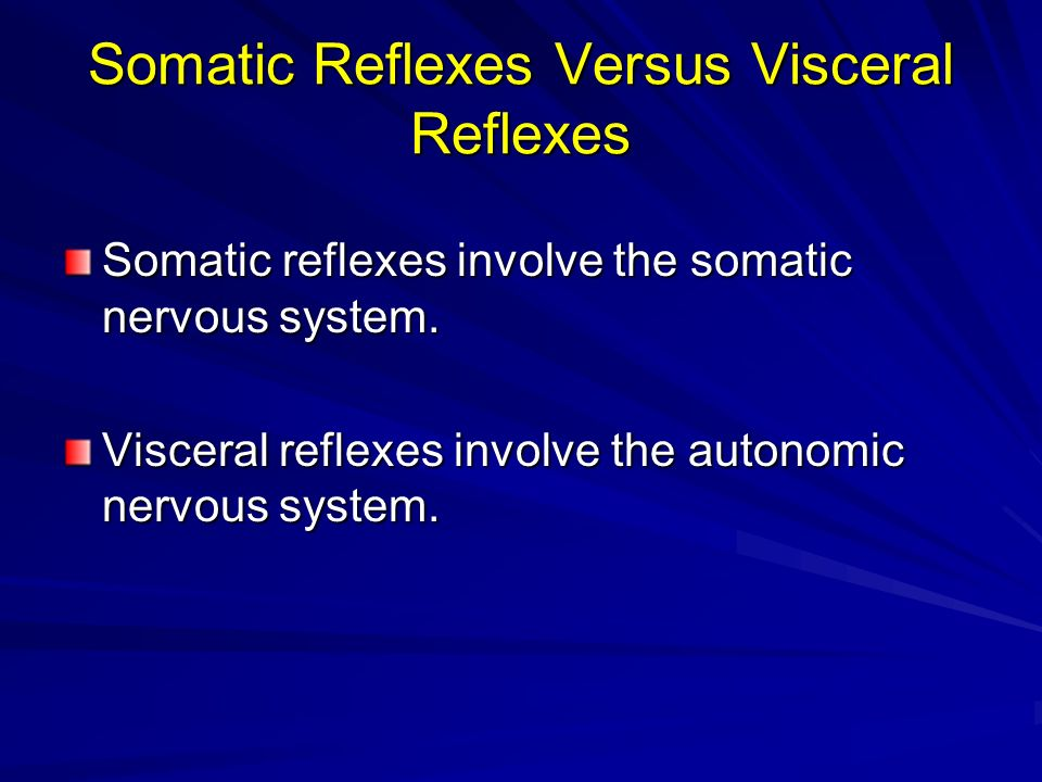 Somatic Reflexes Versus Visceral Reflexes