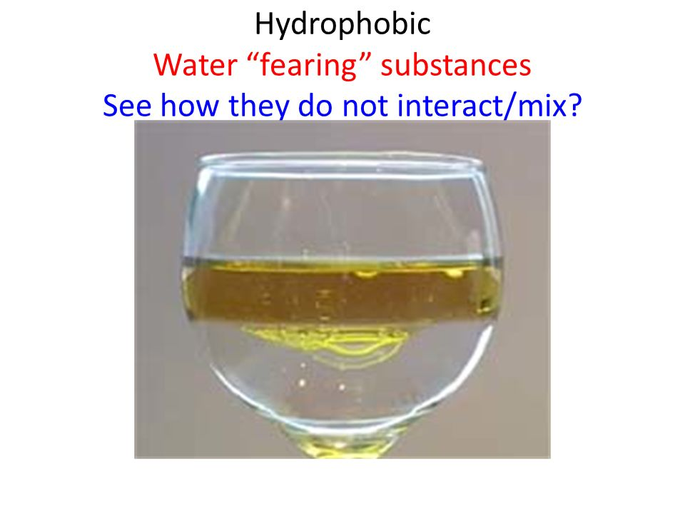 Hydrophobic Water fearing substances See how they do not interact/mix