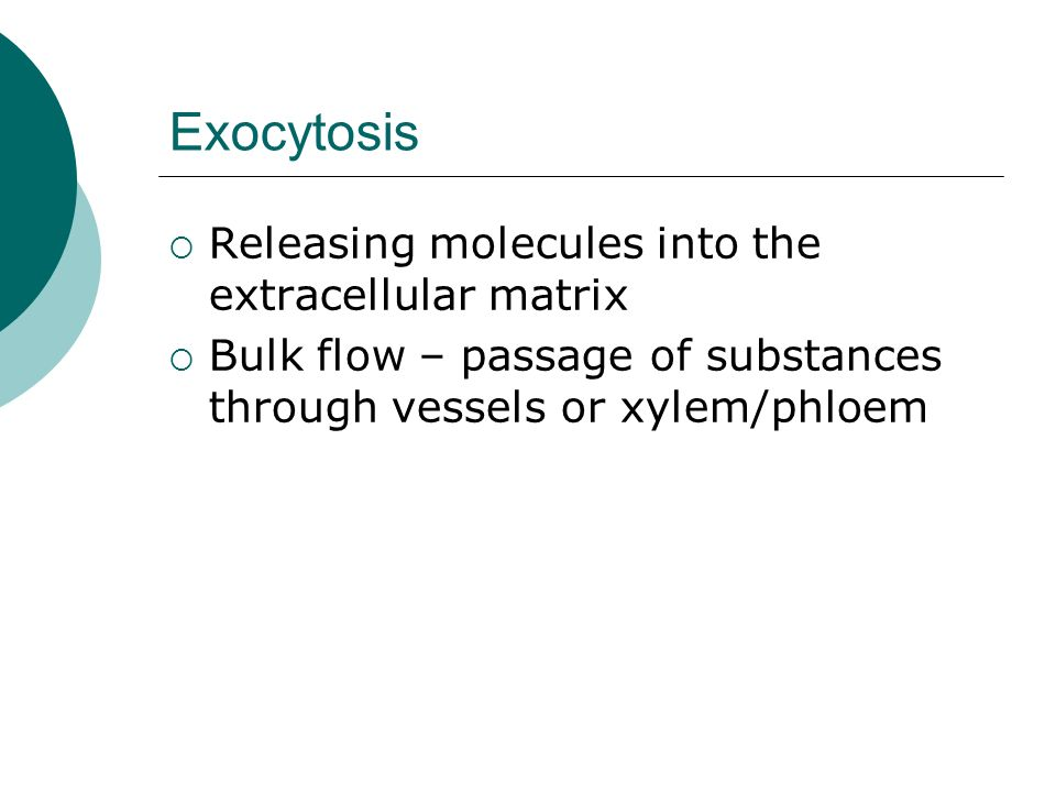 Exocytosis Releasing molecules into the extracellular matrix