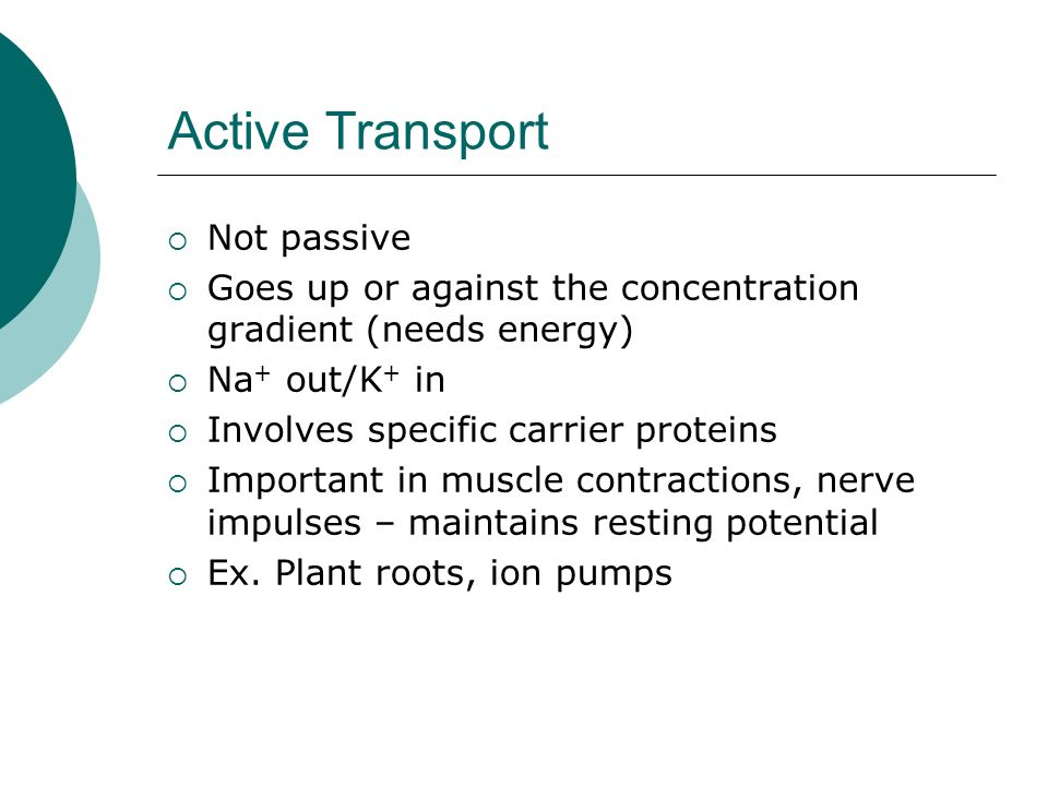 Active Transport Not passive