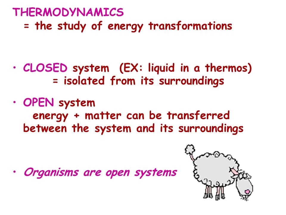 THERMODYNAMICS = the study of energy transformations