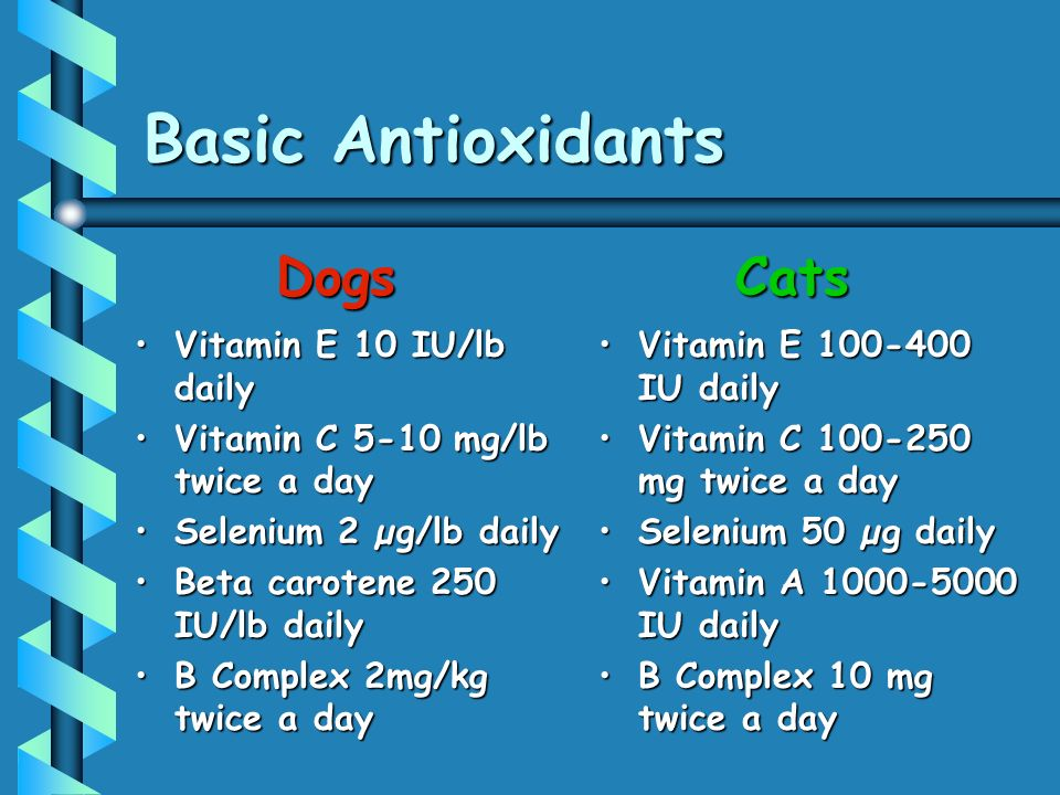 Basic Antioxidants Dogs Cats Vitamin E 10 IU/lb daily