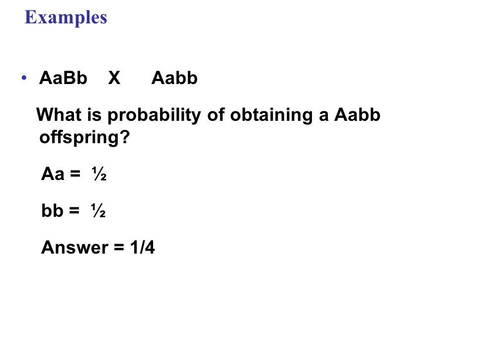 Examples AaBb X Aabb. What is probability of obtaining a Aabb offspring Aa = ½. bb = ½.