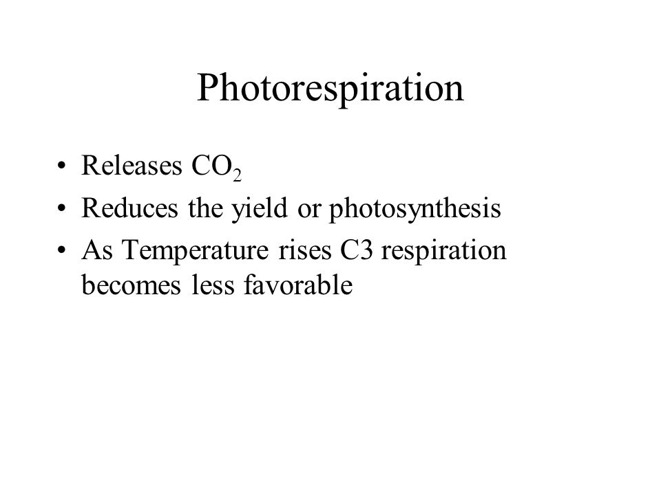 Photorespiration Releases CO2 Reduces the yield or photosynthesis