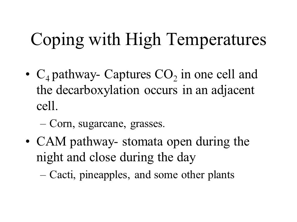 Coping with High Temperatures