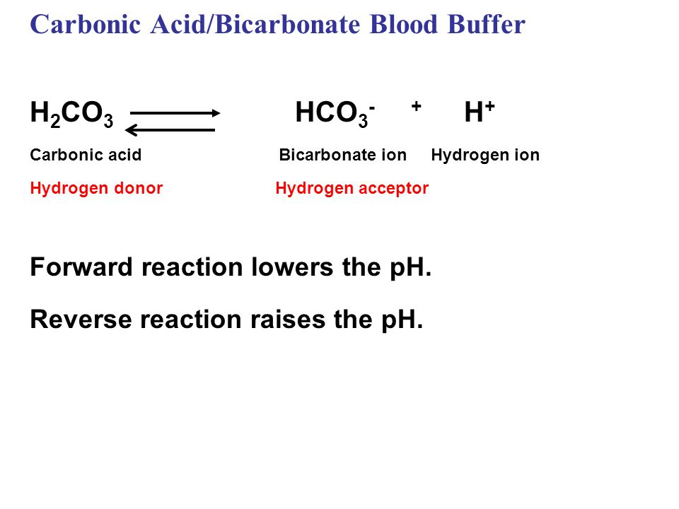 Carbonic Acid/Bicarbonate Blood Buffer