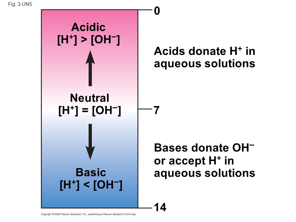 Acidic [H+] > [OH–] Neutral [H+] = [OH–] 7 Basic [H+] < [OH–] 14