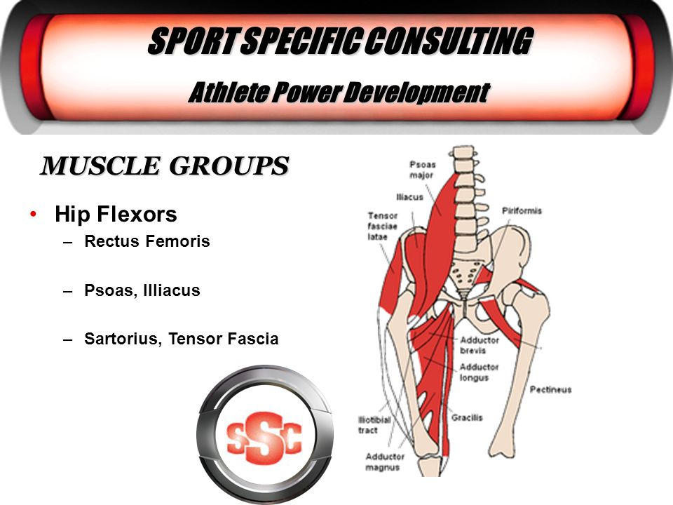 SPORT SPECIFIC CONSULTING Athlete Power Development