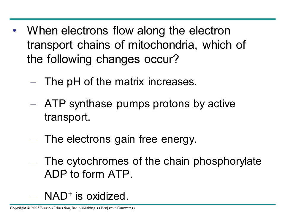 When electrons flow along the electron transport chains of mitochondria, which of the following changes occur