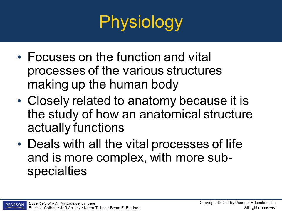 Physiology Focuses on the function and vital processes of the various structures making up the human body.