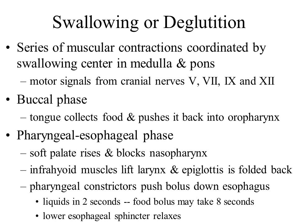 Swallowing or Deglutition