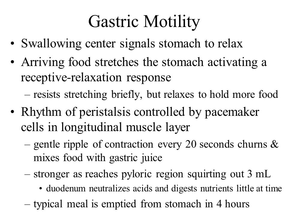 Gastric Motility Swallowing center signals stomach to relax