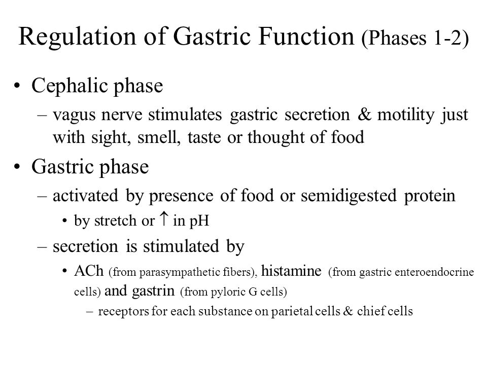 Regulation of Gastric Function (Phases 1-2)