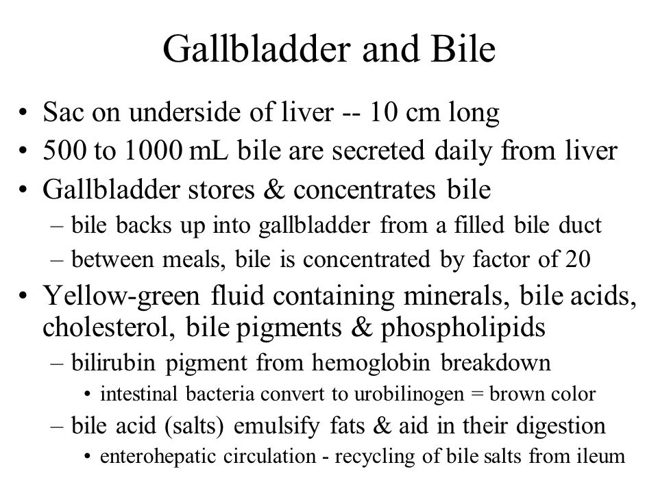 Gallbladder and Bile Sac on underside of liver cm long