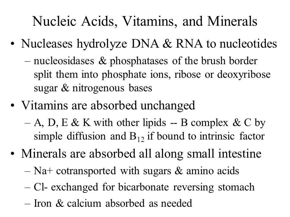 Nucleic Acids, Vitamins, and Minerals