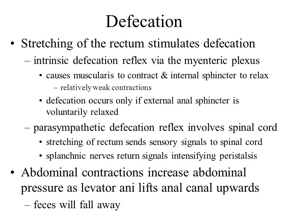 Defecation Stretching of the rectum stimulates defecation