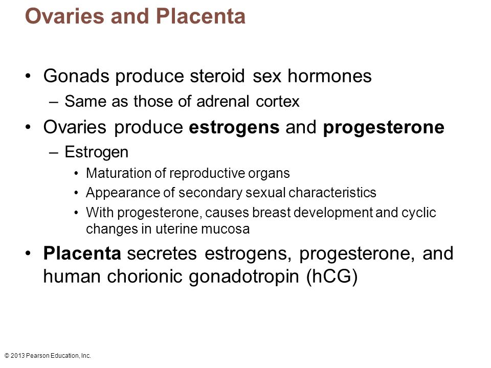 Ovaries and Placenta Gonads produce steroid sex hormones
