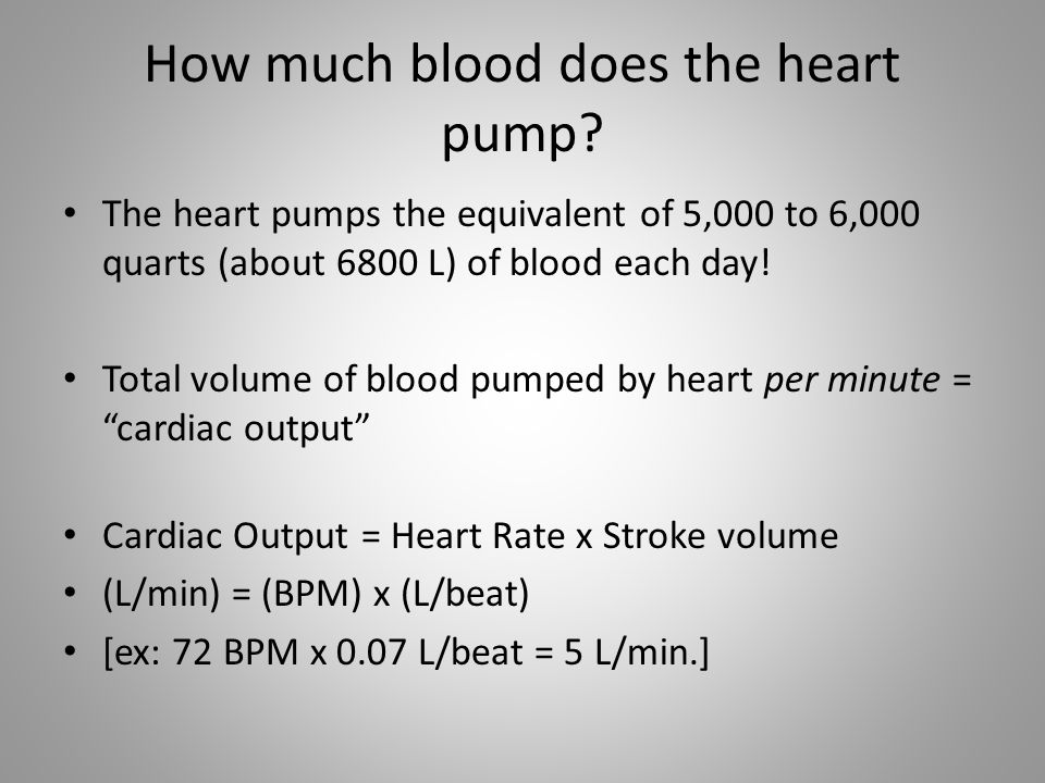 How much blood does the heart pump