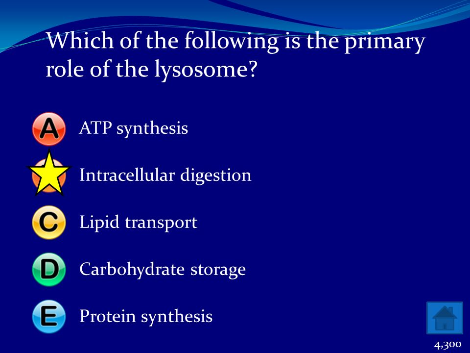 Which of the following is the primary role of the lysosome