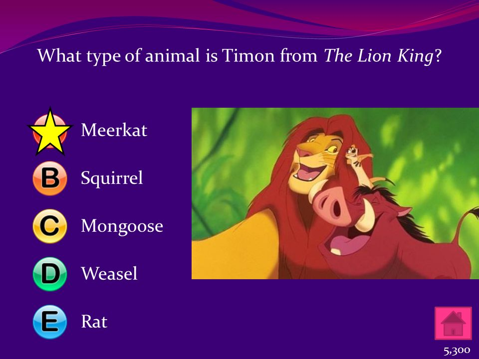 What type of animal is Timon from The Lion King