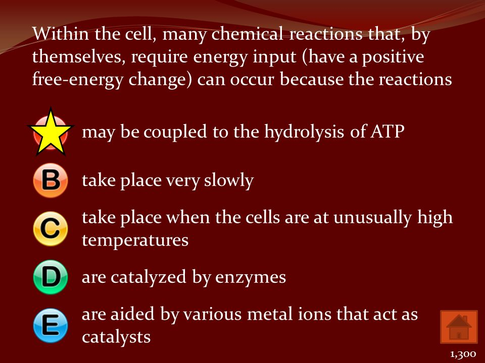 may be coupled to the hydrolysis of ATP